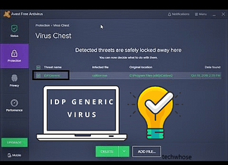 what is idp generic